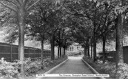 Bexleyheath, The Avenue, Brampton Road School c.1950