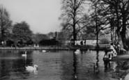 Bexleyheath, The Swans In Danson Park c.1955