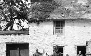 Bideford, Poultry, Old Ford Farm Yard 1890