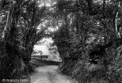 Bideford, Upcott Lane 1906