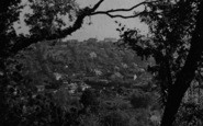 Biggin Hill, The Valley, A Peep Through The Trees c.1955