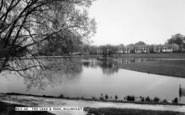 Billericay, The Lake And Park c.1960