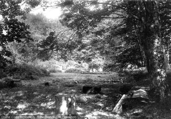 Bindon Abbey, 1894