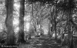 1894, Bindon Abbey