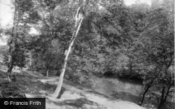 Bingley, On The River 1894