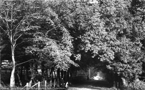 Bishop's Stortford, Cricketfield Lane 1899