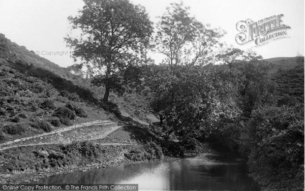 Bishopston, The Valley 1893