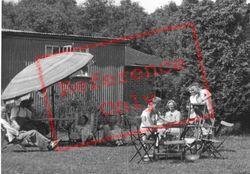 A Sunny Aftenoon c.1955, Blackboys