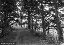 Blackpool, Lane From Village 1918
