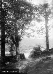 A Country Walk c.1930, Blaenau Ffestiniog