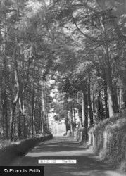 Blanchland, The Firs c.1960