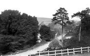 Blandford Forum, Whitecliffe Mill c.1900