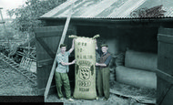 Bodiam, Hop Packing 1957