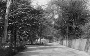 Bognor Regis, Upper Bognor Road, Hotham Park 1895