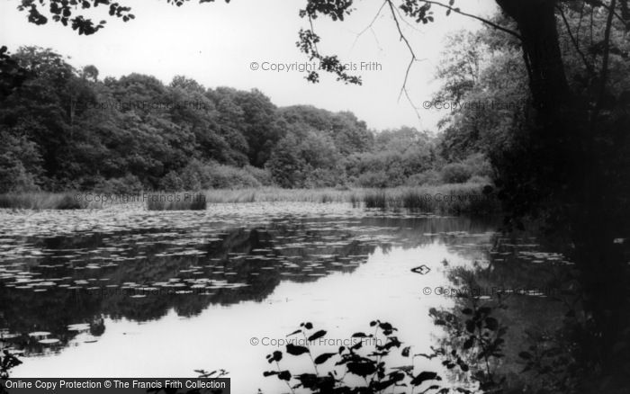 Photo of Bolney, The Old Mill Ponds c.1960