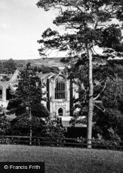 Bolton Abbey, A Peep Through The Trees c.1950