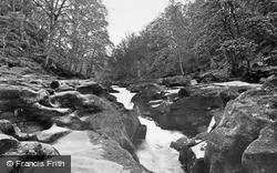 The Strid, Cavendish Woods c.1955, Bolton Abbey