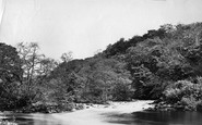 Bolton Abbey, Woods, Meeting Of The Waters c.1874