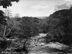 Bolton Abbey, Woods, On The Wharfe c.1874