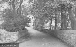 Bolton-Le-Sands, Tree Lane c.1955