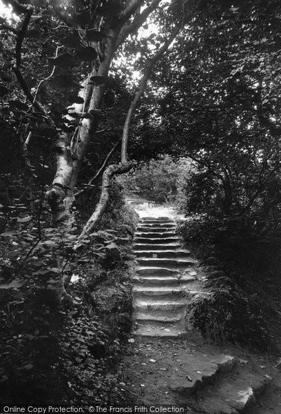 Bonchurch, Landslip Steps 1913
