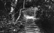 Bonchurch, Landslip Steps 1913