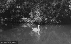 Bonchurch, The Pond c.1955