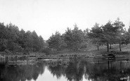 Bordon, Oxney Pond c.1905