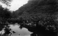 Boscastle, Valency Valley 1906