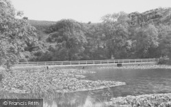 Bosherston, The Lily Pond And Bridge c.1955