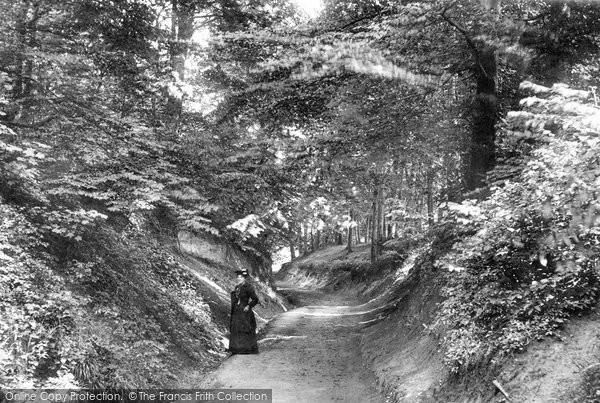 Boston Spa, Holgate Lane 1893