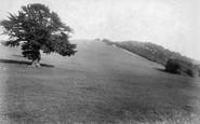 Box Hill, 1903