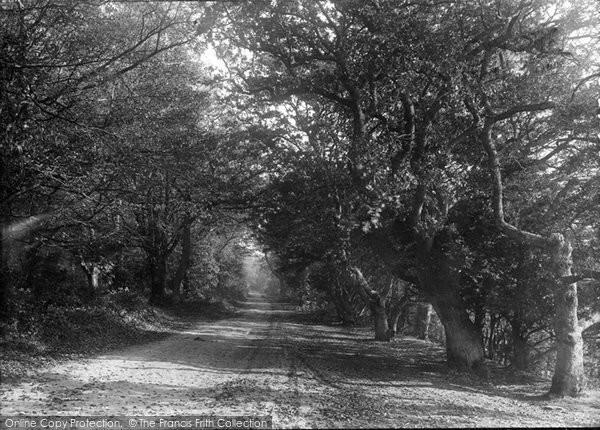 Box Hill, 1906