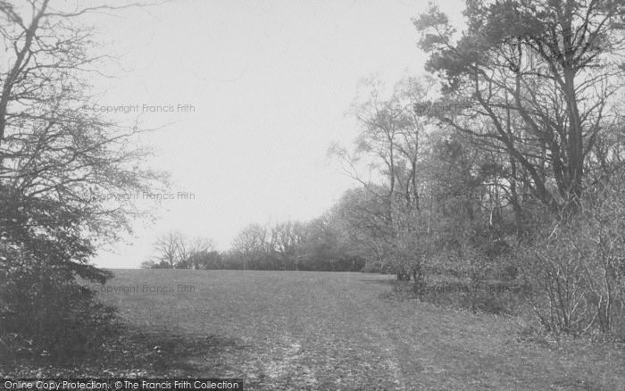 Photo of Box Hill, On The Hill 1890