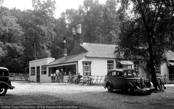 Photo of Box Hill, the Fort Tea Gardens c1955