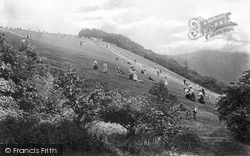 The Slopes 1906, Box Hill