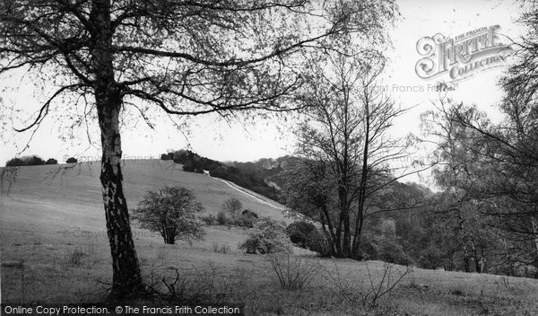 Box Hill, The Slopes c.1955