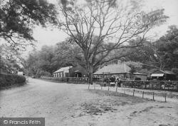 Upper Farm 1925, Box Hill