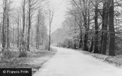 Bradenham, The Beeches c.1955