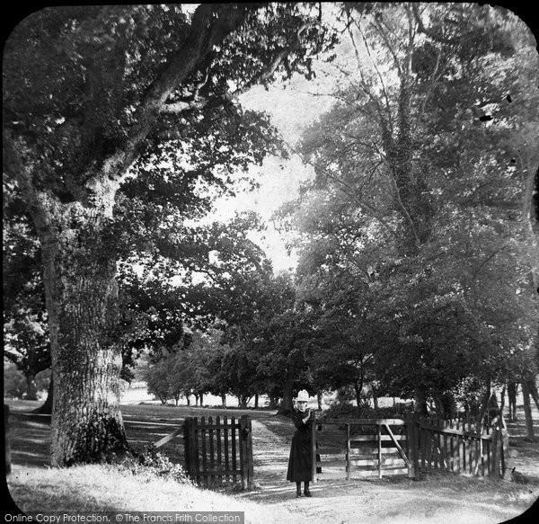 Brading, Nunwell Park c.1880