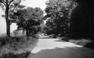 Bradley, Bradley Woods c.1960