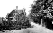 Braintree, Entrance To Public Gardens 1902