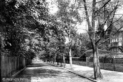 Braintree, The Avenue 1901