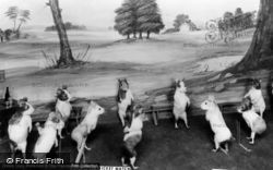 Museum, Guinea Pigs' Cricket Match c.1930, Bramber