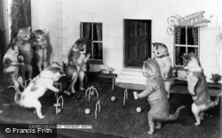 Museum, The Kittens' Croquet Party c.1930, Bramber