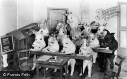 Bramber, Museum, The Rabbits School - Class 1 Writing c.1930