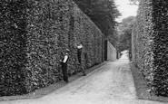 Bramham, Gardeners Cutting The Beech Hedge 1909