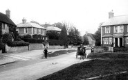 Bramley, 1908