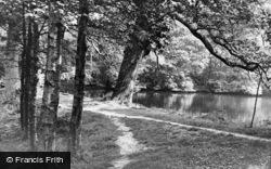 Bramley, Wintershall c.1955
