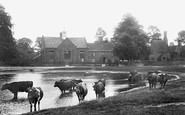 Brampton, Pond And Schools 1907